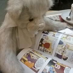 Reading (zaramcaspurren) Tags: charliebears teddybear teddybears teddies stuffedtoy stuffedanimal softtoys softtoy plush plushtoy plushies plushie disneyprincesscomics amymebberson book
