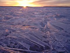 Jäätä (pikkuanna) Tags: oulu 2017 meri sea ranta shore lumi snow jää ice kide crystal