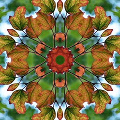 Kaleido Abstract 1581 (Lostash) Tags: art edited abstract patterns symmetry shapes kaleidoscopes