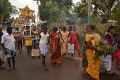 Indien India Pondicherry Puducherry Blog (54) (lustforlifeblog) Tags: indien india pondicherry puducherry blog lust4life lustforlife south kali prozession procession goddess göttin tod death