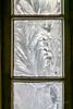 Eisblumen (Franks Fotoecke) Tags: winter eis eisblumen ice fenster window icywindow flowers blumen framed cold
