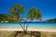 Porto Atheras in Springtime (Rupert Brun) Tags: 2016 greece greek ionian island kefalonia may spring beach sea blue sky sand tree flower bloom agios saint spiridion church explore explored
