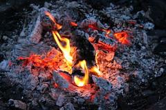 IMG_0156 (hades dotter) Tags: fire wood place sweden suède sverige umea