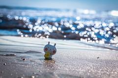 Shirahama / Canon EOS60D:Canon EF-S60mm F2.8 Macro USM (telenity) Tags: japan tateyama eos60d canon coast cute usamaru ocean macro 日本 館山 うさまる 白浜 海岸 海 可愛い かわいい シュール