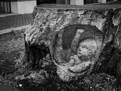 1618 - Scultura (Diego Rosato) Tags: albero tree tronco scultura sculpture legno wood bianconero blackwhite fuji x30 rawtherapee