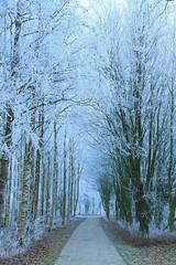 Natuur park Lelystad