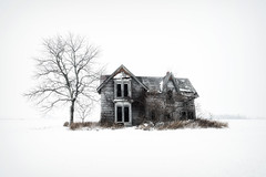 Cold and Abandoned (Brian Krouskie) Tags: abandoned farm house tree snow winter cold muirkirk home white decay snowing talbot trail morpeth palmyra architecture
