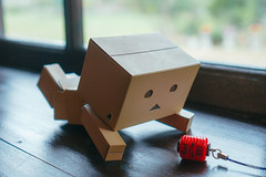 DSC06799.jpg (Jia-Wei Liang) Tags: pingtung cafe 屏東 咖啡 sony a7 2870mm danboard 阿愣 ダンボー 窗戶 wood