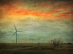 #windfarm in Burlington, CO. These are way bigger than I thought! Just one of the blades takes up an entire car carrier! #Hipstafiend #skylab #distressedfx #landscape #Neweramuseum #mobiography #p58 #TheAppWhisperer (kimartino1 Hipstafiend) Tags: painterly cloudporn landscape instagramapp iphoneography