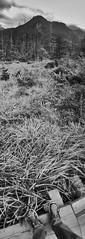 Kamikchi () (Jon-F, themachine) Tags: park panorama nature japan vertical digital asian outdoors asia long parks cellphone hide mobilephone  nippon japo oriental orient  fareast nagano nihon kamikochi digitalphotography  iphone  japn 2015    landoftherisingsun    iphonography xapn jonfu iphone6