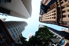 São Paulo / SP [ EXPLORED - Sep 26, 2015 #425 ] (De Santis) Tags: city cidade brazil sky fish eye arquitetura brasil nikon downtown sãopaulo centro céu fisheye peixe sp olho 8mm edifício martinelli olhodepeixe d7100 fernandodesantis