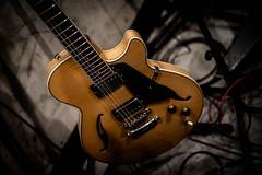 ギター (jimy40_2008) Tags: nikon sound dali recording d800