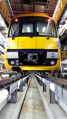 Time for a Grease and Oil change.... lol (TrainDriverYoda) Tags: waratah hornsby a41 sydneytrains hornsbymaintenancecentre