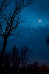 Venus and Crescent Moon 2 (imageClear) Tags: night evening venus moon crescentmoon blue landscape framing tree sky celestial aperture nikon d500 35mmf18dx imageclear flickr photostream
