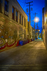 Alley (DJ Wolfman) Tags: alley annarbor annarbormi street streetshots streetphotography michigan olympus olympusomd em5ii