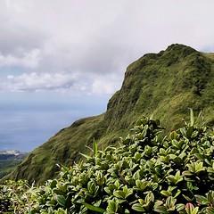 Montagne Pelée, Martinique, France (pom.angers) Tags: panasonicdmctz3 2010 february montagnepelée volcano martinique 972 dromcom france europeanunion antilles francedoutremer