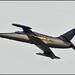 Smoke failure - Aero L-159B