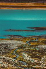 IMG_4821 (gaujourfrancoise) Tags: arctic arctique svalbard norway norvège gaujour northpole pôlenord longyearbyen spitsberg spitzberg