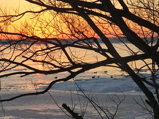 A January Sunset/ Le soleil se couche