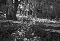 Abandoned Motel #8 (PositiveAboutNegatives) Tags: leica leitz leicaflexsl leicaflex 35mmelmarit leicar foma fomapan r100 slidefilm abandoned empty derelict deserted vacant closed motel hotel urbex coolscan bw blackandwhite