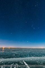 Winter Stars on Ice #3 (Amazing Sky Photography) Tags: alberta aldebaran beltoforion dogstars lakemacgregor moonlight orion orionbelt procyon sirius taurus frozen glitterpath ice lake nightscape stars winter