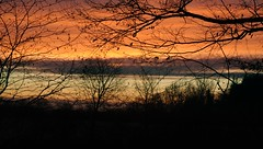 Am Morgen; Bergenhusen, Stapelholm (6) (Chironius) Tags: stapelholm bergenhusen schleswigholstein deutschland germany allemagne alemania germania германия szlezwigholsztyn niemcy himmel sky ciel cielo hemel небо gökyüzü wolken clouds wolke nube nuvole nuage облака morgendämmerung sonnenaufgang morgengrauen утро morgen morning dawn sunrise matin aube mattina alba ochtend dageraad zonsopgang рассвет восходсолнца amanecer morgens dämmerung gegenlicht silhouette baum bäume tree trees arbre дерево árbol arbres деревья árboles albero árvore ağaç boom träd