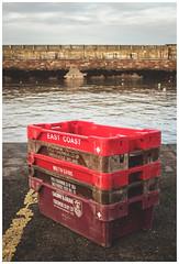 Fishing Containers, Dunbar (Gordon_Farquhar) Tags: dunbar west barns beach lothian ness lighthouse torness power station scotland scottish east coast