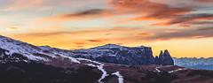 Massiccio dello Sciliar (Nicola Pezzoli) Tags: nature snow winter val gardena italy tourism colors dolomites dolomiti mountain santa cristina ortisei gröden alto adige sunset sciliar ski