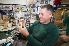 iss050e019065 (NASA Johnson) Tags: christmas xmas holiday expedition 50 celebration fun cookie food