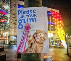 Gummy paws (I Loves The 'Diff) Tags: chewinggum cat cardiff