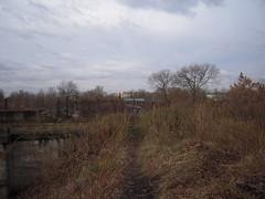 DSCN5240 (TajemniczaIstota761) Tags: abandoned railway viaduct wiadukt kolejowy