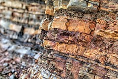 Minor White's Wall (Don3rdSE) Tags: don3rdse 3rdsiblingphotography canon canon5d 5d eos february 2017 or oregon coast oregoncoast beach point seascape travel weather ocean water sand rock shoreacres statepark minorwhiteswall color texture rocks soil