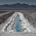 salt evaporation. bristol dry lake, ca. 2014.