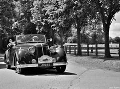 1938 Amilcar Compound cabriolet (pontfire) Tags: auto france cars car compound nikon automobile 1938 voiture coche carros carro normandie autos oldcars normandy classiccars automobiles coches voitures cabriolet automobili antiquecars wagen sportcars vieillevoiture frenchcars beuvronenauge amilcar voituredesport voituredecollection voitureancienne b38 voiturefranaise appf pontfire pontifre lepaysdauge rallyeautomobileinternationaldupaysdefougres rallyedefougres 21erallyedupaysdefougres j9292 1938amilcar typeb38