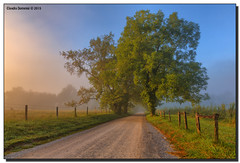 Sparks Lane on a Foggy Morning (Fraggle Red) Tags: morning trees summer mountains fog nationalpark cove tennessee hills smokies hdr smokymountains greatsmokymountains cadescove greatsmokymountainsnationalpark canonef24105mmf4lisusm 7exp sparkslane dphdr canoneos5dmarkiii 5d3 5diii adobephotoshopcs6 adobelightroom5