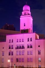 2015Pink Ribbon Kanagawa 2015 (ELCAN KE-7A) Tags: pink japan pentax illumination  ribbon yokohama kanagawa    2015    k5s