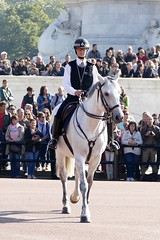 Police on horse Buckingham Palace London England (roli_b) Tags: england horse london britain great police palace buckinghampalace buckingham cavallo pferd polizei palast