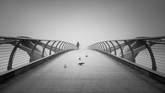 Free Spirit II (vulture labs) Tags: woman london fog pigeon vulturelabs