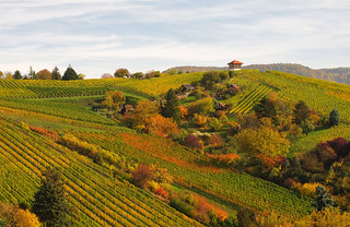 Rolling Hills in Autumn - Landscape in Stuttgart, Germany