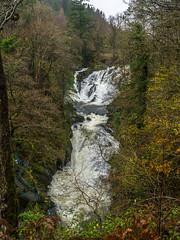 20151114-_1150463.jpg (IanRolo) Tags: river y falls waterfalls betwsycoed betws coed swallow snowdonia swallowfalls afon llugwy afonllugwy riverllugwy