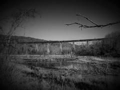 Pleasant Creek trestle (photography_isn't_terrorism) Tags: railroad bridge train wv swamp bo railroadbridge railroadtrestle wildlifemanagementarea pleasantcreek baltimoreohio