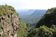 Gods Window, Mpumalanga (Abspires40) Tags: nature animals southafrica scenery wildlife scenic krugernationalpark krugerpark kruger knp