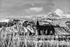 Iceland 2016 - Búðakirkja (cesbai1) Tags: vesturland islande is búðakirkja búðir budir kirkja church eglise iceland islanda islandia noiretblanc black white noir et blanc nb bw snæfellsnes snow neige