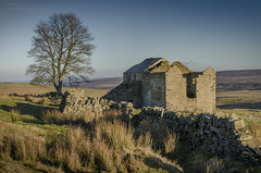 Abandoned Farmstead, North Pennines (DM Allan) Tags: farm farmstead abandoned lonely bleak harsh weather moorland penines durham