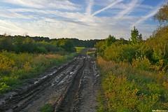 Преодолев весьма сложный участок сырого леса подъезжаем влотную к селу Старя Тойда. В наших планах вечернее купание и забор воды.