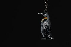 Penguin keyring (Arkle1) Tags: macromondays redux2016myfavouritethemeoftheyear penguin keyring
