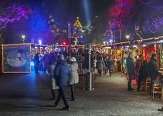 Christmas time in Katerini (teogera) Tags: ελλάδα κατερίνη πάρκο χριστούγεννα νυχτερινό μακεδονία πιερία hellas greece macedonia makedonia pieria katerini park christmass 2016 night nightshots olympus e330 zuiko f35561445mm ngc
