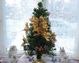 Noël  2016 -  Christmas 2016..........DSCN25672