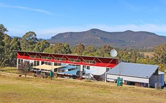 204 Thompsons Road, Milbrodale NSW