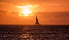 Maui sunset (pato_82) Tags: maui hawaii usa unitedstates states kaanapali kaanapalibeach beach sun sunset shift boat island amazing awesome dream love loveit canon canon60d westcoast west evening horizon holidays friends free freedom sky skyline red skyred silhouette epic expo